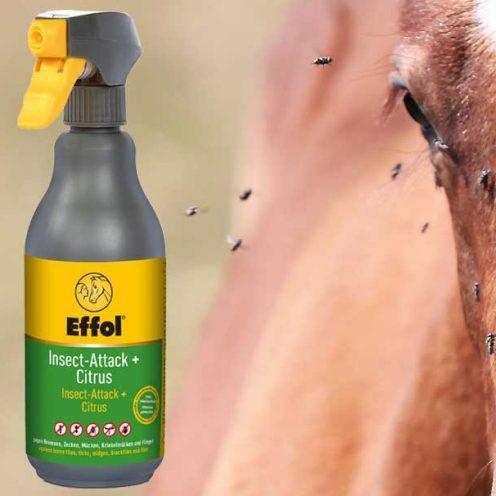Produkt des Monats Mai: Effol Insect Attack + Citrus