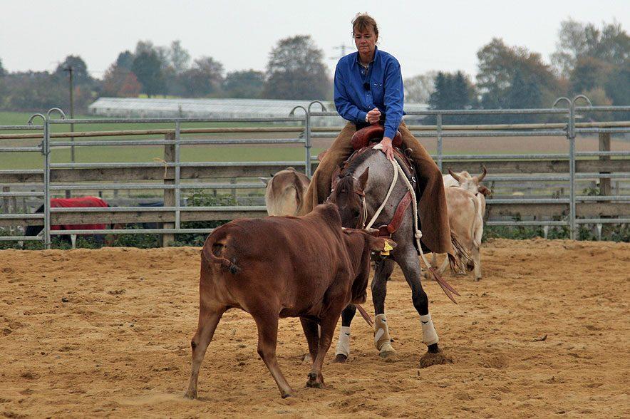 Ammerbucher Pferdefestival 2019: Ute Holm ist vor allem in den Rinderdisziplinen ein absoluter Profi.