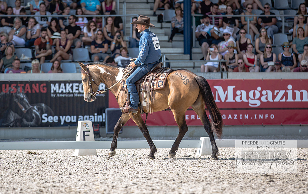 Die schöne Mustangstute Hope und der Franzose Thierry Dhaussy konnten sich beim Mustang Makeover 2019 den neunten Platz sichern.