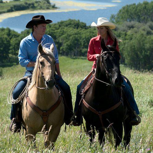 Ab dem 26. September 2019 in Deutschland zu kaufen - wenige Tage vorher kannst du Staffel 8 der kultigen Pferde-Serie bei uns bereits gewinnen!