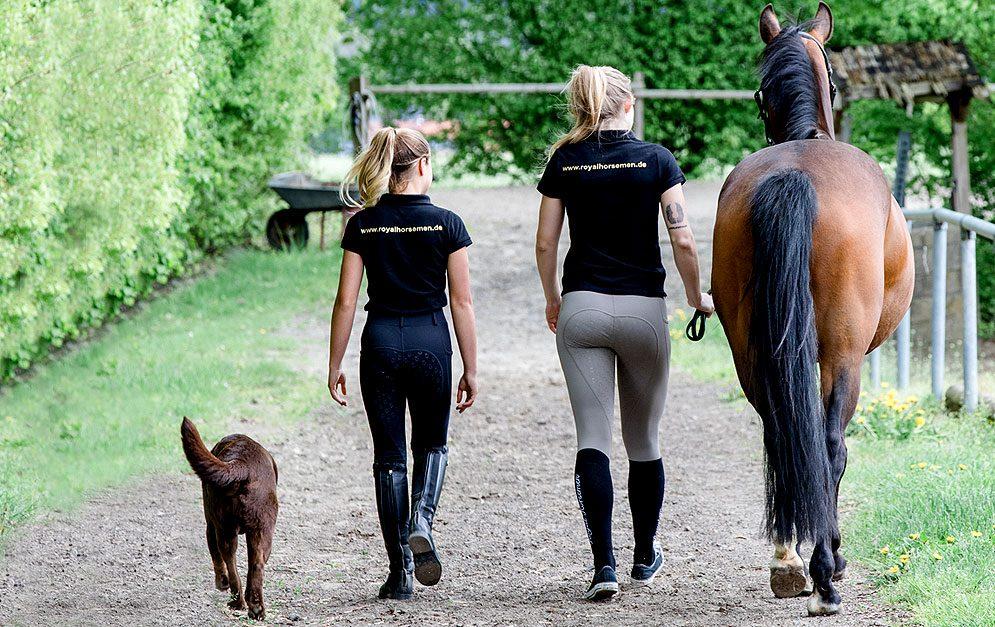 Nachhaltige Reitbekleidung – diese Reitsocken von Royal Horsemen® werden nachhaltig produziert. Wir stellen dir das Produkt und die Firma vor. © Royal Horsemen®