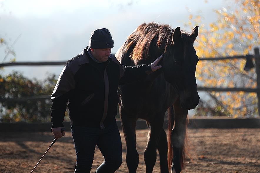 Hier siehst du ein Porcupine Game: Ralf möchte eine Kurve gehen, sein Pferd Fritz lässt ihm dabei etwas zu wenig Platz. Eine Berührung am Hals reicht hier schon aus, damit Fritz weicht.