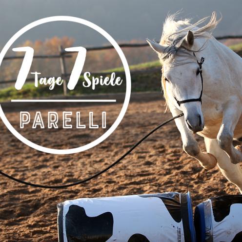 Tauche ein in die Welt des Natural Horsemanship nach Parelli. Jeden Tag veröffentlichen wir in dieser Woche eines der 7 Spiele nach Parelli (inkl. Film).