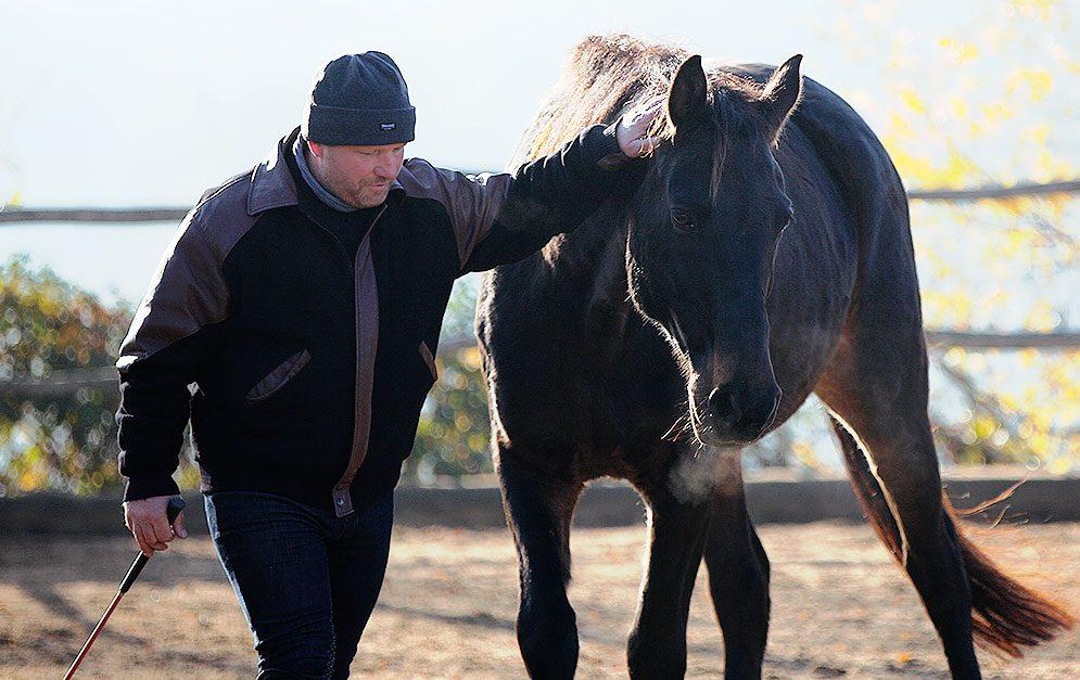 Wenn du richtig mit deinem Pferd kommunizierst, wirst du zu einem würdigen Leader für dein Pferd. Horsemanship nach Pat Parelli setzt genau dort an.