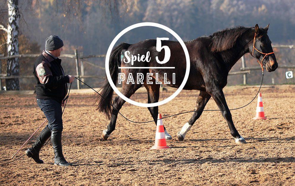 Das Circling Game nach Parelli hilft dir dabei, deinem Pferd die Verantwortung zu übertragen, Übungen selbstständig auszuführen.