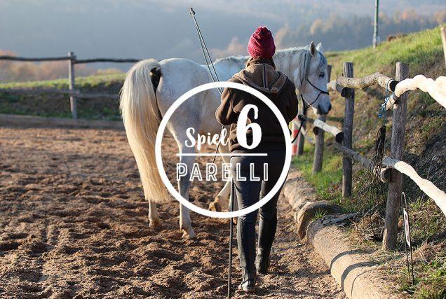 Bei dem Sideways Game lernt das Pferd zur Seite zu weichen. Je besser es rück- und seitwärts gehen kann, desto besser macht es auch andere Übungen.