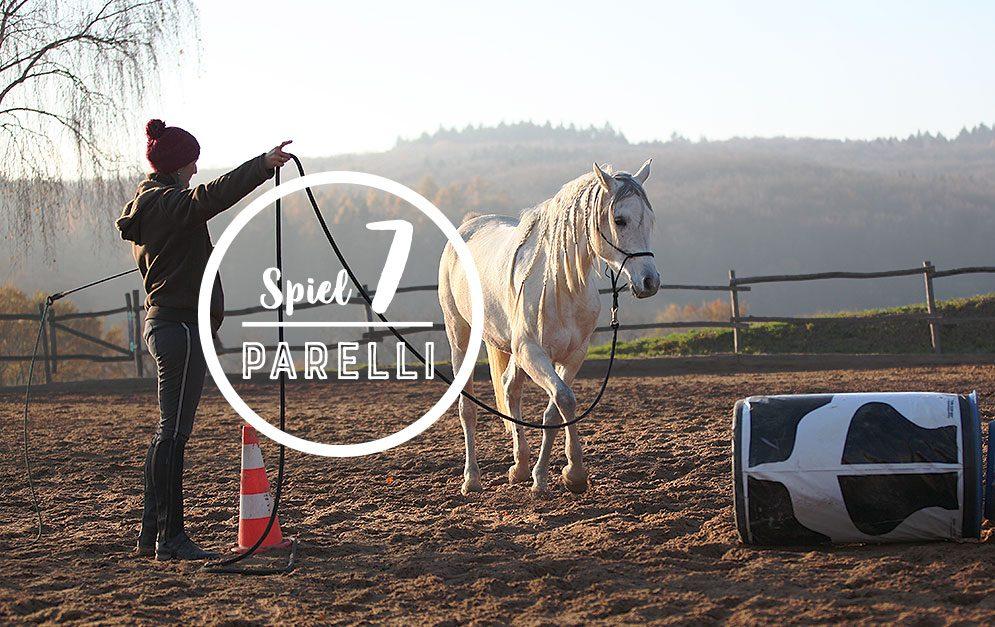 Das Squeeze Game bringt deinem Pferd bei, durch enge oder ungewohnte Passagen zu gehen - das hilft dir später zum Beispiel beim Verladen.
