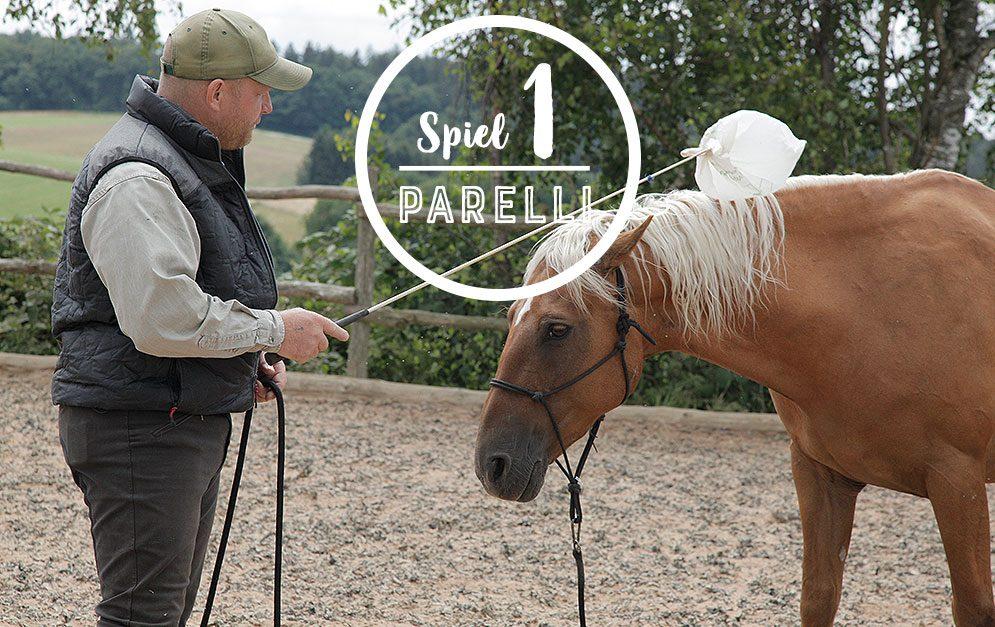 Das Friendly Game ist das erste der 7 Spiele nach Parelli und bringt das Pferd dazu, Berührungen zuzulassen und dem Menschen zu vertrauen.