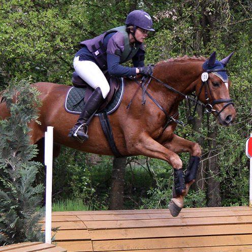 ▶ | Sei dabei, wie ein Profi seine Vielseitigkeitspferde ausbildet und für die Saison fit macht - von der Vorstellung der Pferde bis hin zum ersten gemeinsamen Start!