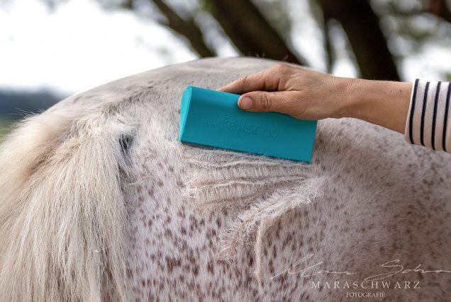 Schnelle, einfache und effektive Unterstützung beim Fellwechsel - das wünscht sich doch jeder Pferdebesitzer! Der Fellwechselhelfer von fellschön® macht's möglich!