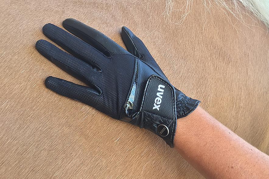 Renate und ihr Haflinger kamen gut mit dem Handschuh zurecht.