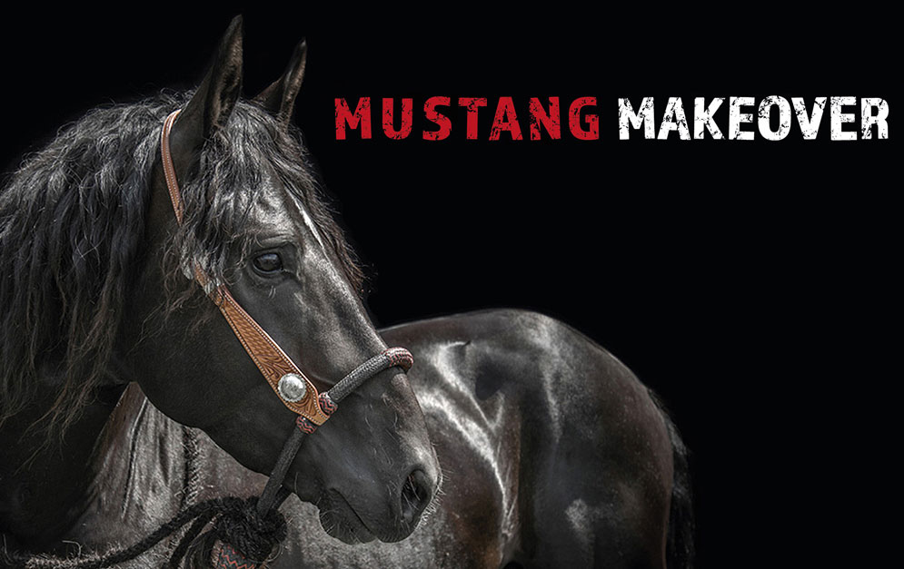 Mustang Makeover 2020