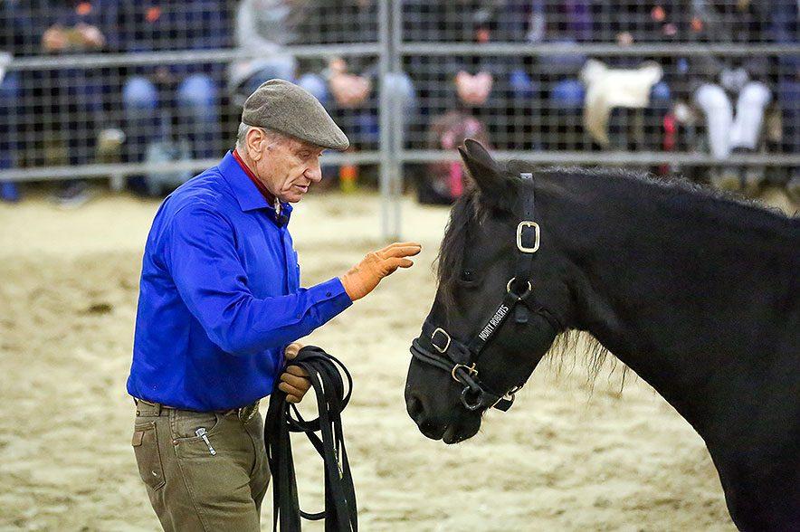 Ende November ist Monty Roberts in Hessen zu Gast und zeigt neben seiner Arbeit mit Pferden auch sein Projekt Horse Sense & Healing. © Katrin Junker