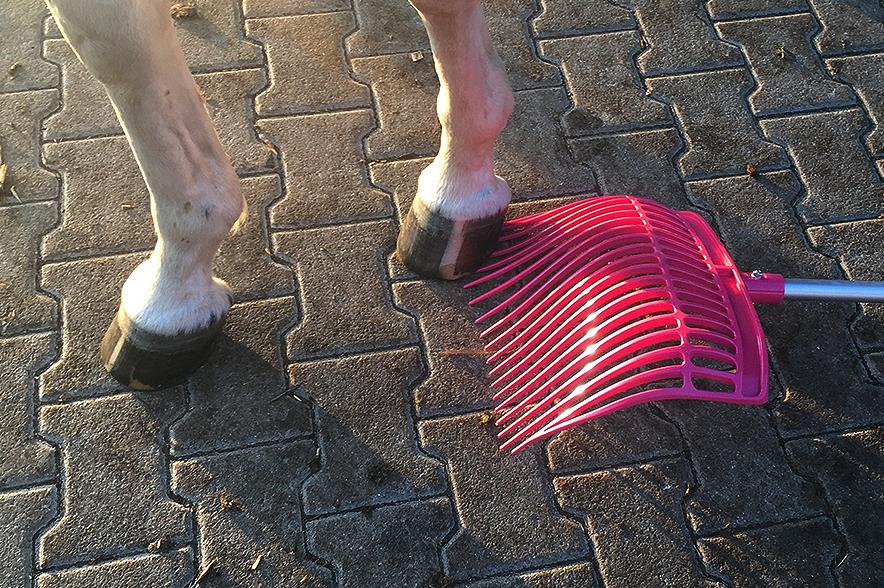 Mistgabel gegen Pferdegewicht - die unzerstörbare Mistgabel gewinnt!
