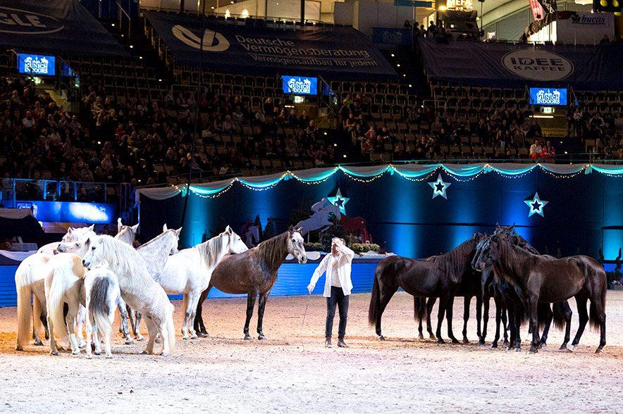 """Faszinierte in der Olympiahalle Groß und Klein: Jean Francois Pignon mit seiner Herde """"Black & White"""". © Thomas Hellmann"""