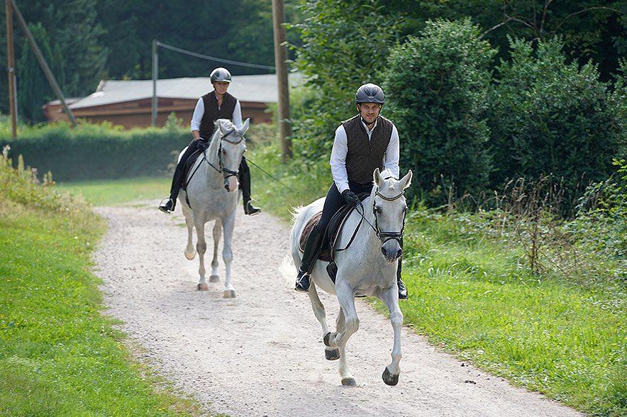 Reiten im Gelände tut Mensch und Pferd gut und schult Ausdauer & Koordination.