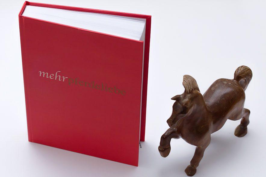 Das mehrpferdeliebe Tagebuch ist dein optimaler Begleiter für die nächsten 6 Monate.