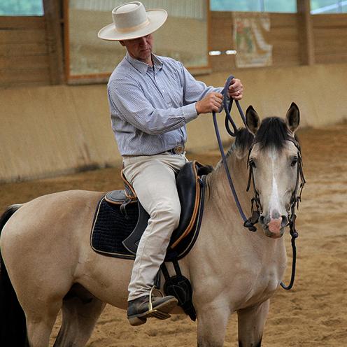 Mein Pferd lässt sich schlecht lösen, ist zäh und rollt sich ein - was tun? Ernst-Peter Frey gibt Tipps.