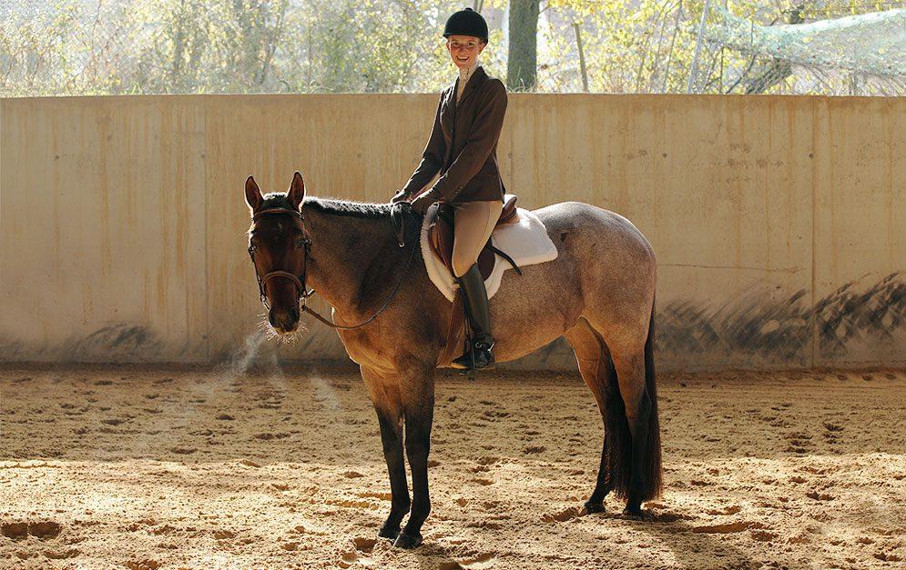 Westerndisziplin Hunter under Saddle