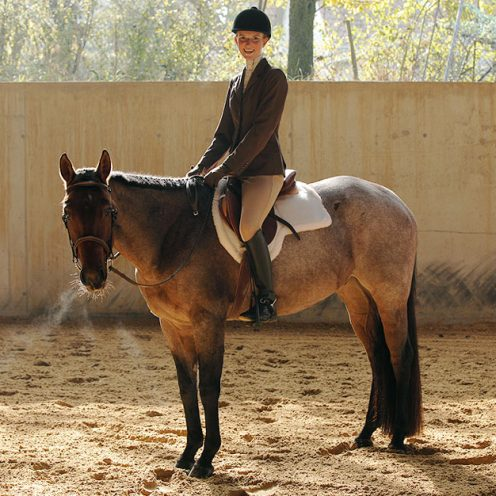 Westerndisziplin Hunter under Saddle