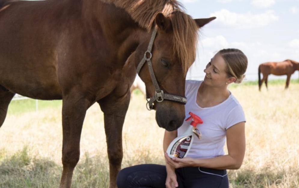 Der DEET Phaser von leovet schützt dein Pferd optimal vor allen Insekten, damit ihr beide sorgenfrei durch den heißen Sommer kommt.