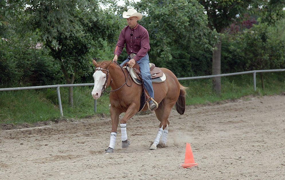 Weißt du, wann dein Pferd welches Bein anhebt? Das ist wichtig für viele Übungen und hiermit lernst du, dein Gefüh zu schulen.