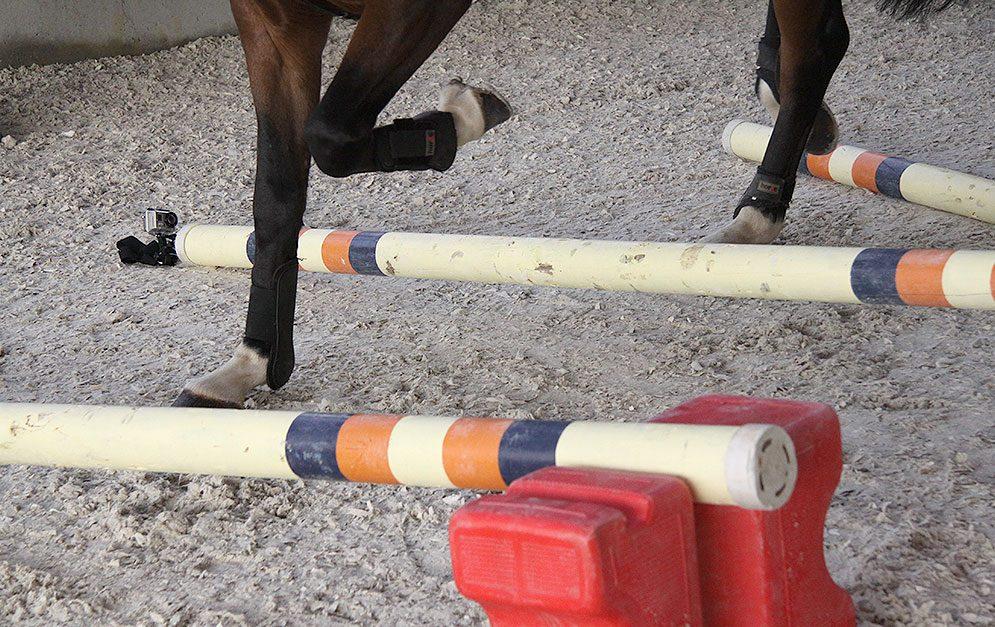 Mit dieser Reitübung förderst du die Losgelassenheit deines Pferdes und kräftigst seine Muskulatur. Reiter und Pferd bekommen ein besseres Gefühl für Takt, Rhythmus und Tempo.
