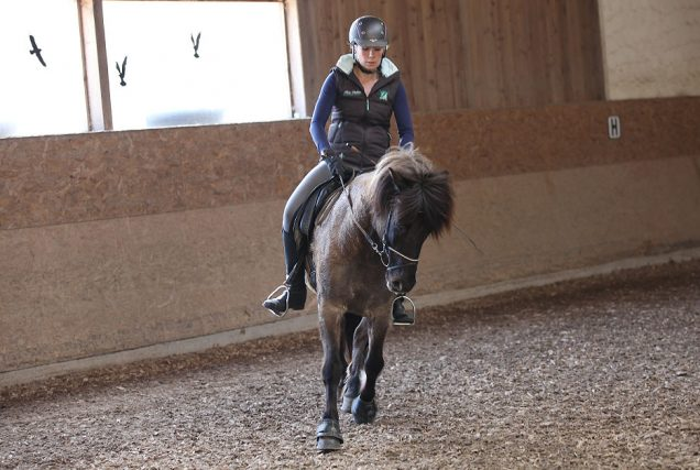 Die Variation des Raumgriffs im Trab und die Arbeit an der Kadenz des Pferdes fördern Motivation und fordern Konzentration von Mensch und Tier.