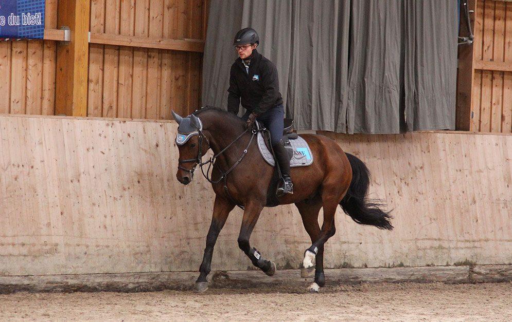 In dieser Reitübung arbeiten Pferd und Reiter mit Hilfe von vielen Wendungen und Wechseln zwischen Hand- und Außengalopp an der Qualität der Galoppade.