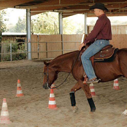 Das Reiten auf gebogenen Linien und engen Wendungen zählt zu den grössten Herausforderungen in der täglichen Arbeit mit dem Pferd. Neben einer exakten Stellung und präzisen Biegung ist vor allem die korrekte Hilfengebung für den Erfolg der Übung maßgeblich.