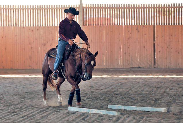 Reitübung: Durch die Gassen. In dieser Reitübung kannst du mit Hilfe weniger Stangen viele verschiedene und effektive Trainingseffekte erzielen.