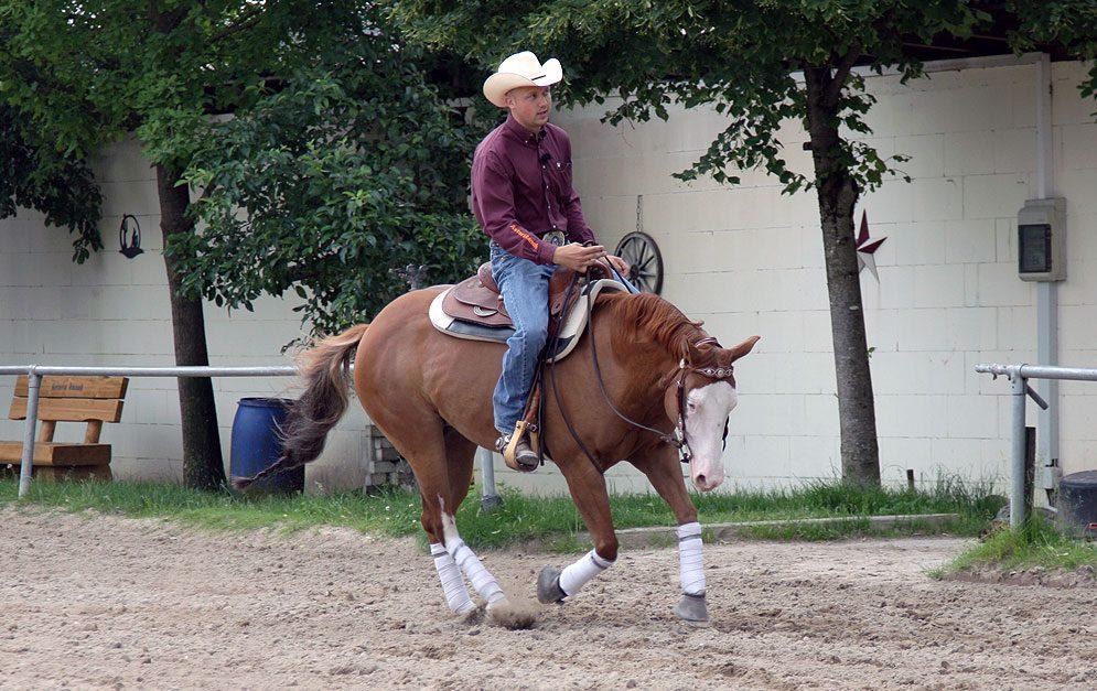 Bei der Reitübung Schulter-Lift handelt es sich um eine Übung, durch die das Pferd gerade gerichtet wird und dadurch nicht nur lernt selbständiger und besser zu arbeiten, sondern auch einen höheren Versammlungsgrad erreichen kann.