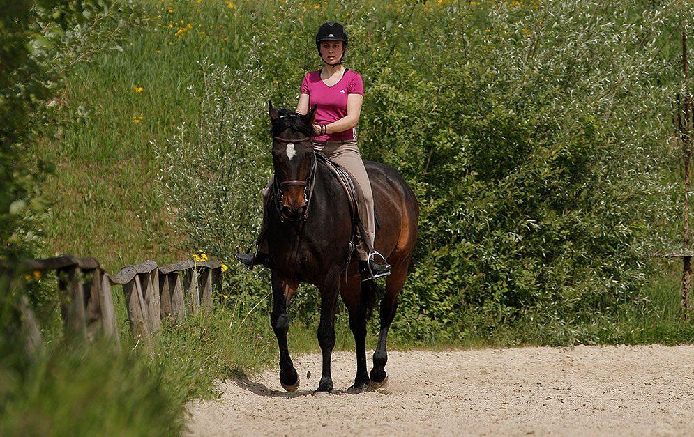 Stärke die Hinterhand deines Pferdes und die Durchlässigkeit mit Hilfe der Übung Travers in der Kehrtvolte.