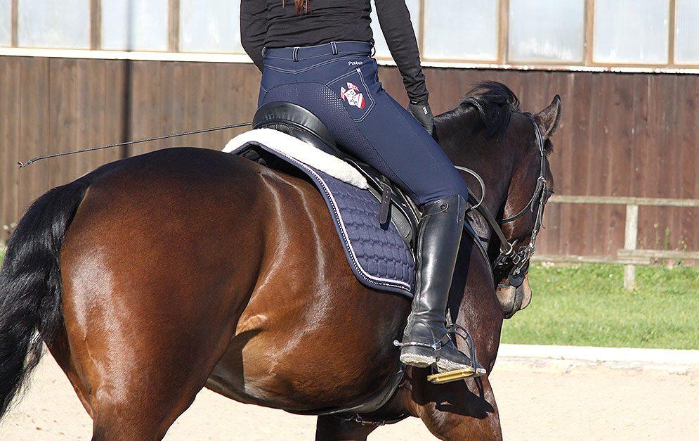 In dieser Reitübung trainierst mit Hilfe von Volten und dem Rückwärtsrichten den Schenkelgehorsam deines Pferdes und verbesserst die Hinterhandaktivität.