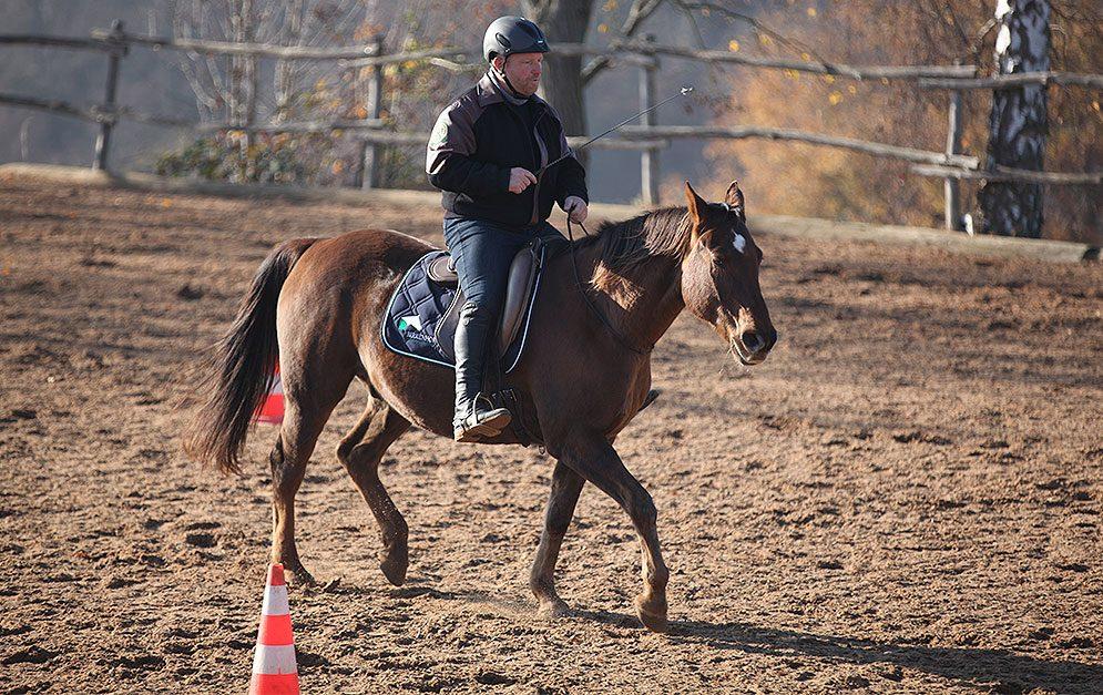 Beim Reiten ohne Zügel trennt sich die Spreu vom Weizen: Viele Reiter scheitern daran, ihr Pferd nur durch Gewichts- und Schenkelhilfen zu führen. Doch für das Training einer unabhängigen Zügelfaust ist dies grundlegende Voraussetzung.