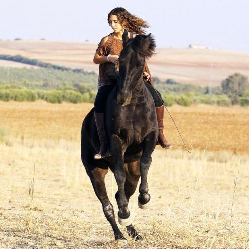 Erfahre in unserem Portrait mehr über die einzigartige Pferdetrainerin: Kenzie Dysli.