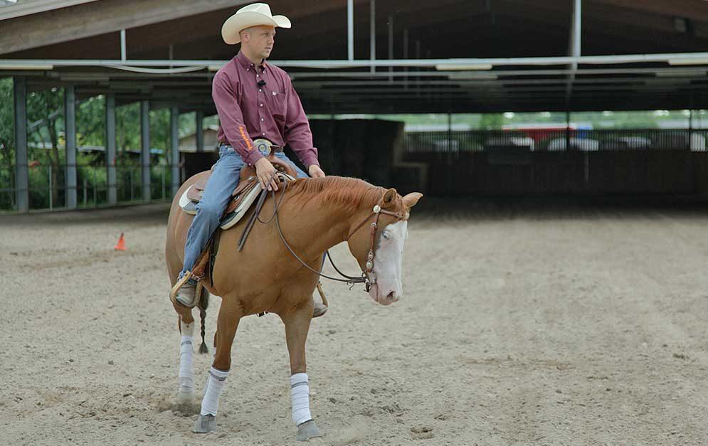 Reitübung Zirkel verkleinern: Wir zeigen dir wie du mit dieser bekannten Lektion die Muskulatur und die Hinterhandaktivität deines Pferdes verbessern kannst.