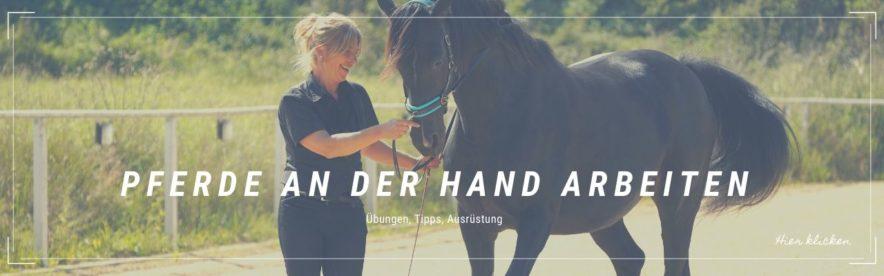 Arbeiten an der Hand