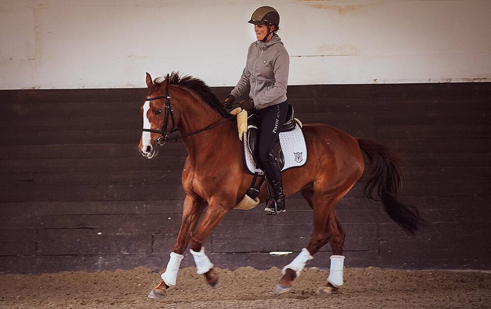 In der Klassischen Dressur geht's darum, aus jedem Pferd das Beste herauszuholen, angepasst auf individuelle Probleme. Denn: Die Dressur ist für's Pferd da und nicht umgekehrt.