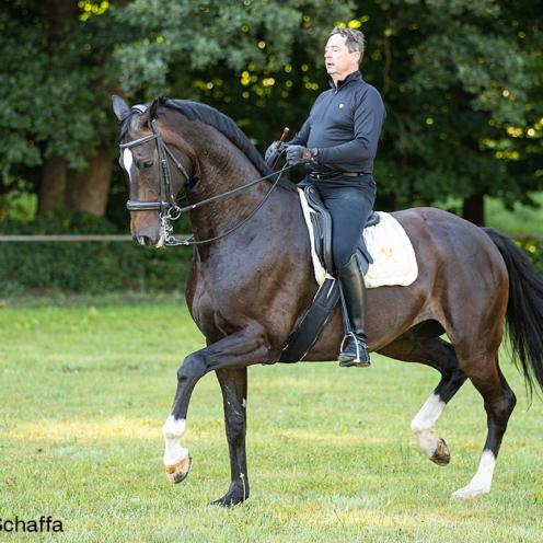Ein Pferd nicht nur ausbalancieren, sondern korrekt versammeln - das kann Christoph Ackermann. Mit seinen Schülerinnen zeigt er, wie's geht.