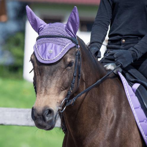 Die ersten Schritte mit Reitergewicht in der Reitbahn sind für junge Pferde schwierig, vor allem im Trab. Hier haben wir eine Übung für dich, die deinem Pferd die Arbeit erleichtert.
