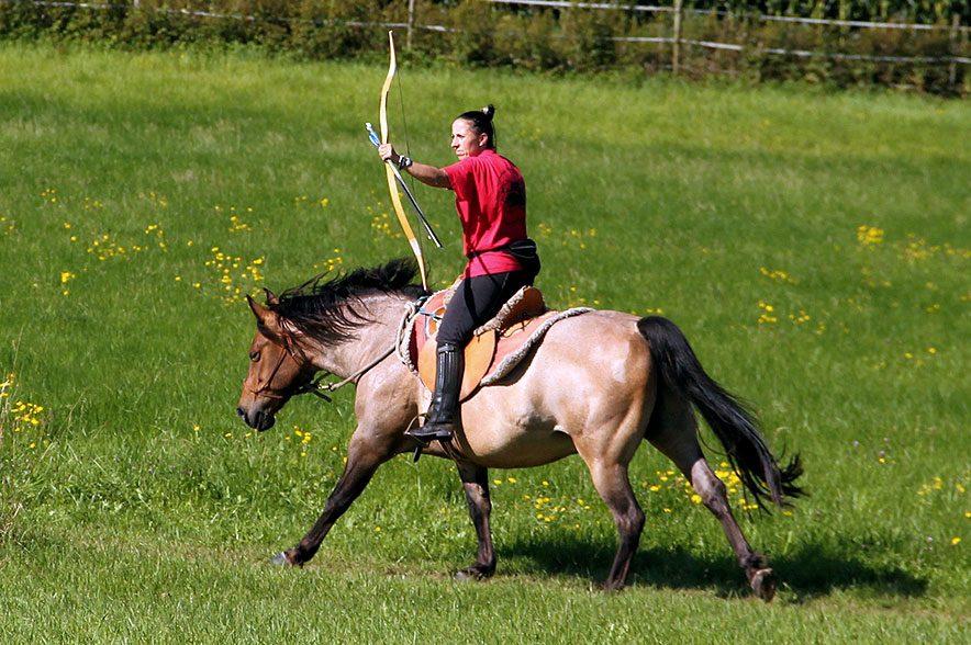 Ein Urlaub mit deinem Pferd? Ein Festival mit Freunden? Ein individueller Lehrgang? Das alles findest du bei Equilumina!