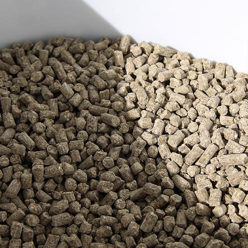 Constanze Röhm ist Futterberaterin und hat eine Frage unserer Gold-Mitglieder beantwortet: Was macht ein hochwertiges Mineralfutter aus?