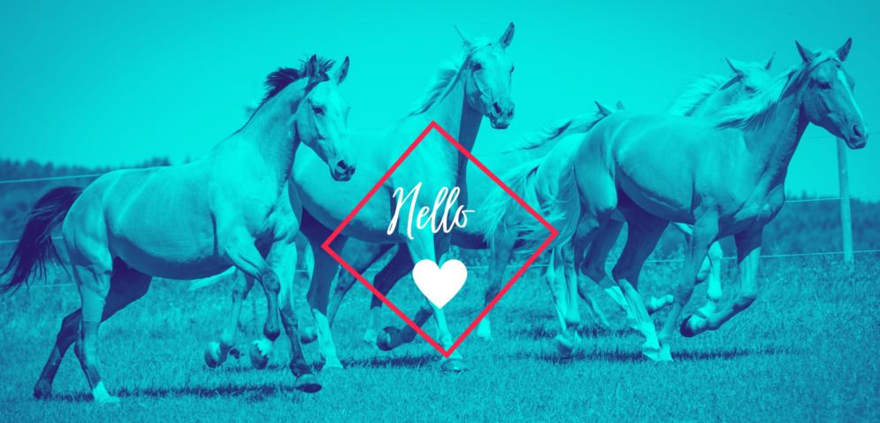 PferdeMagazin Mitgliedschaft