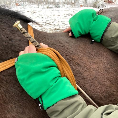 DIE Lösung für uns Reiter im Winter - der Handschutz! Damit hat man warme Hände und trotzdem Fingerspitzengefühl für die Zügel.