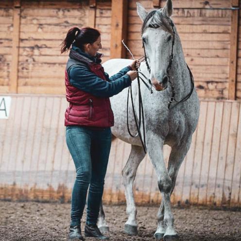 Mit verschiedenen Pferden zeigt Gerlinde Schnapperelle, wie genau Akademische Reitkunst bei ihr funktioniert und den Pferden hilft.