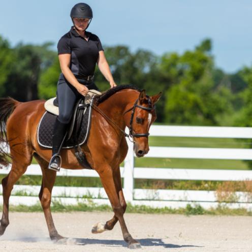 Beim Leichttraben steht man mit dem äußeren Bein des Pferdes auf. Bei jungen Pferden kann es dir aber helfen, mit dem inneren Bein aufzustehen - lies hier mehr dazu.