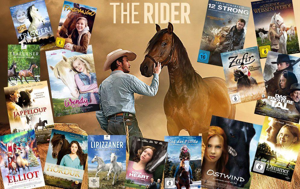 Pferdefilme: wir stellen dir einige unterschiedliche Pferdefilme vor.