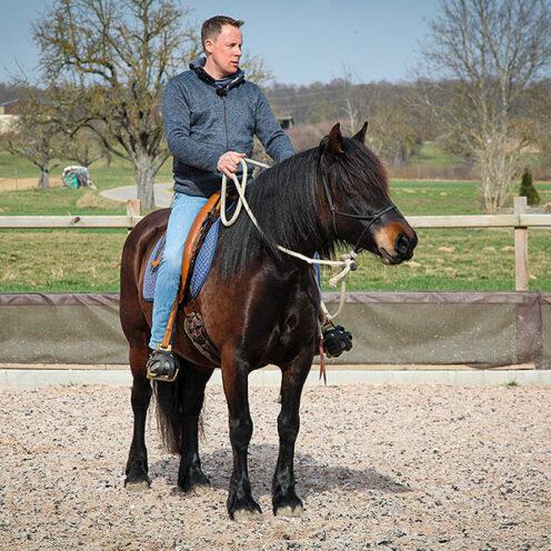▶ | Für Pony Granada beginnt der dritte Tag im Beritt. Zunächst testet Trainer Markus Stoß, ob sie sich vom Boden aus konzentrieren kann und steigt dann auf.
