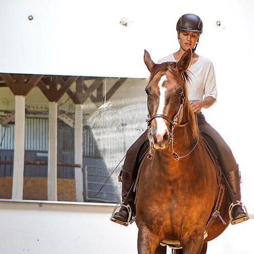 Schluss mit der Sportreiterei! Das hat Hella Mohr für sich entschieden und für ihre Pferde einen anderen Weg beschritten - den, der Harmonie.